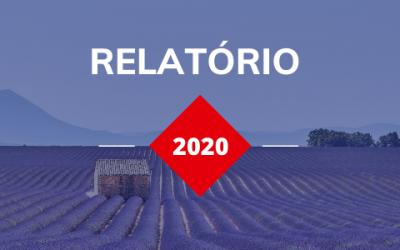 Relatório – Os investimentos internacionais na França em 2020