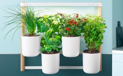 Prêt à Pousser brings sustainable & compact indoor kitchen gardens to Dubai making home growing accessible to everyone.