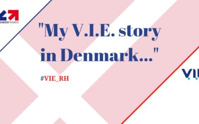 My V.I.E. story: Théo Egal, international trainee at Idealec in Denmark