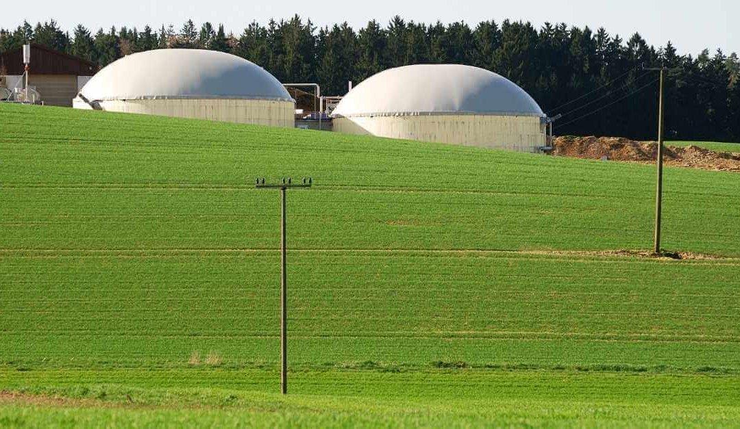 Normandy, fertile soil for biomass